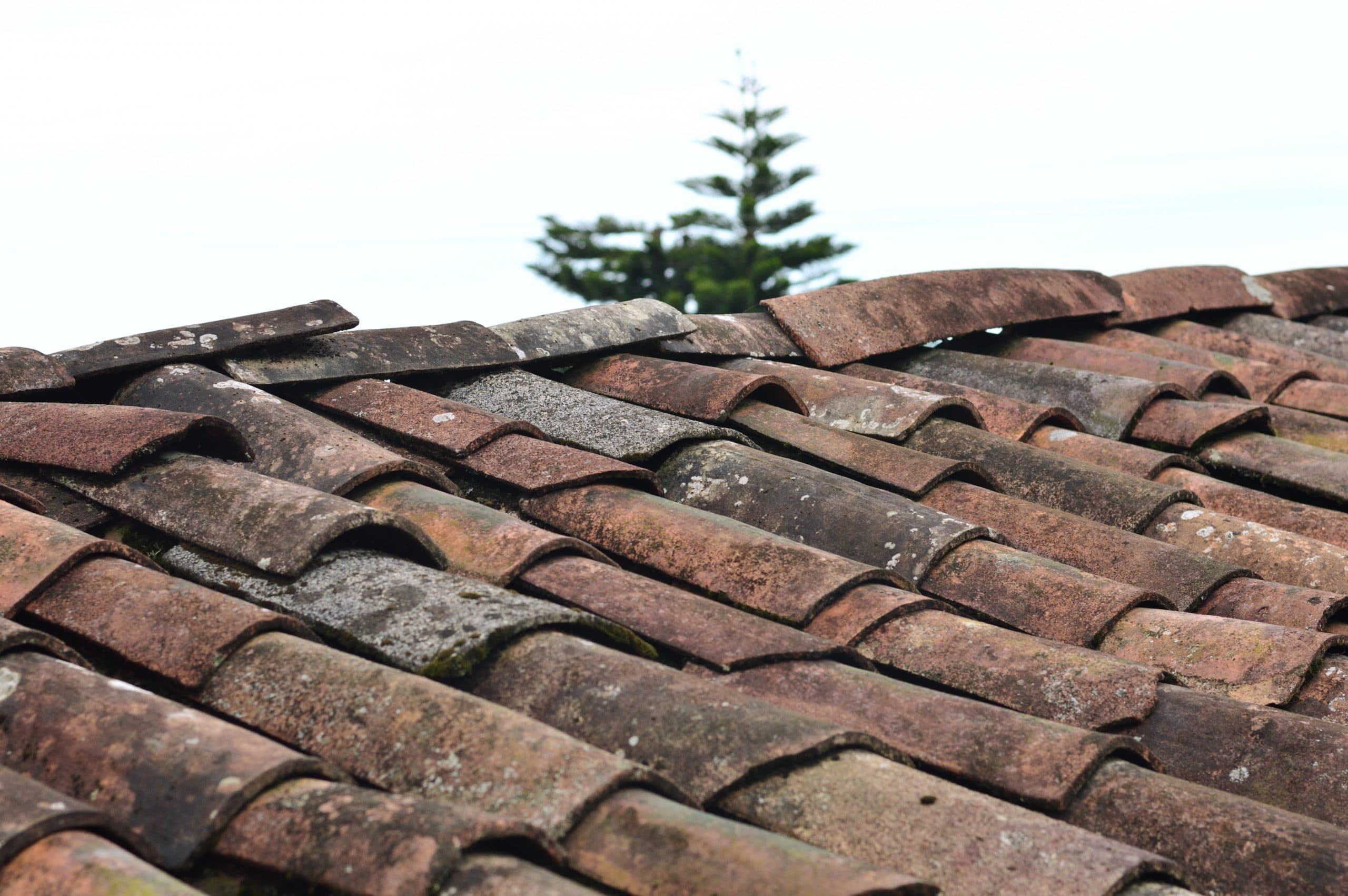 7 Signs Your Roof Needs To Be Repaired or Replaced